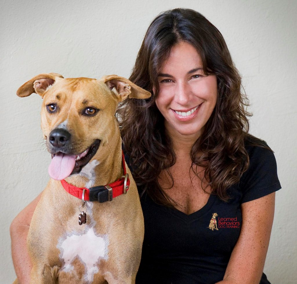 Dog Training - Learned Behaviors - Sandra Machado